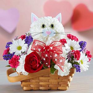 Cat Flowers Arrangement in a Basket