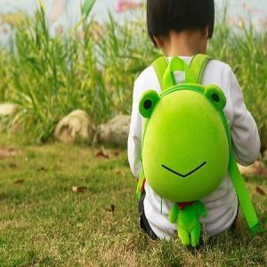 Cute Frog Pet Backbag
