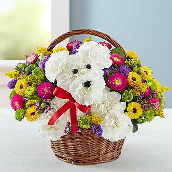 Dog Flowers Arrangement in a Basket